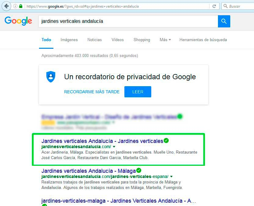 poscionamiento web marbella SEO Andalucía para ACER Jardinería